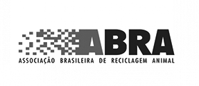 traductor español portugues brasil
